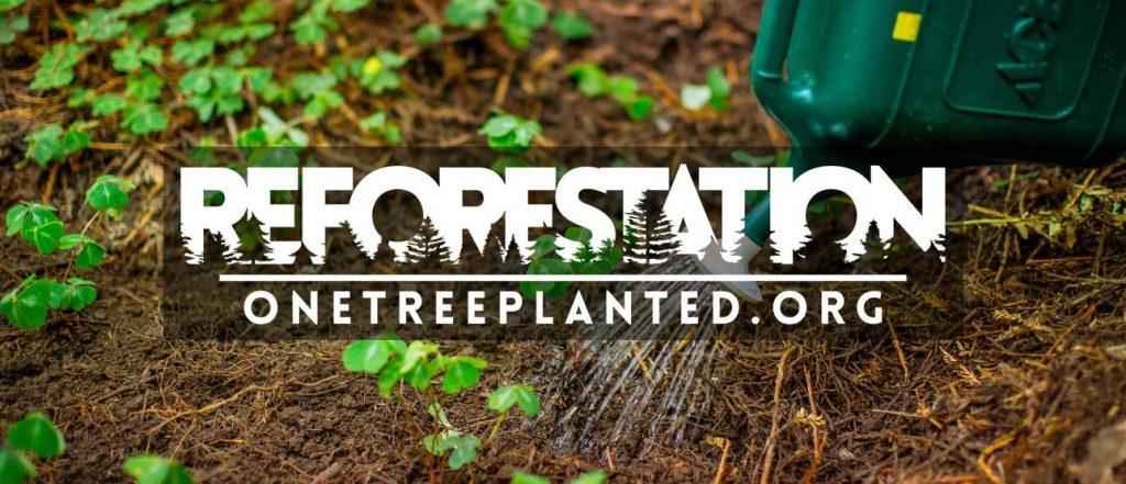 Znoet - Reforestation